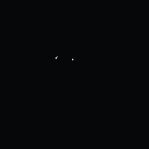 חיים - ציור של כלב שמח