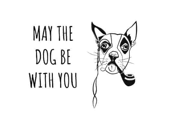 May the dog be with you - illustrated calendar